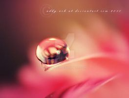 Pink.. . by addy-ack
