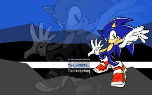 Sonic Wallpaper - Mr. Awesome by TebgDoran