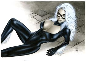 Black Cat Bw717 by AlexMirandaArt