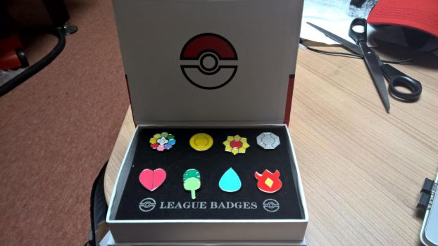 Kanto League - 8 Badges (Cosplay) by Sythnet