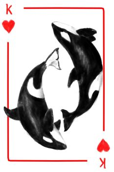 48. King Orca by Spastical-Hyena