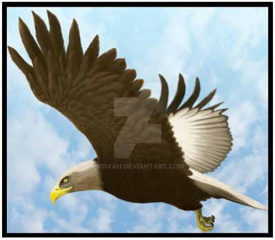 Eagle Finnished 2 by kovah