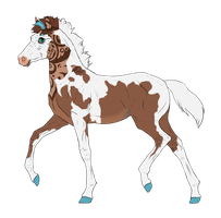 N2483 Padro Foal Design for MistMasquerade by casinuba