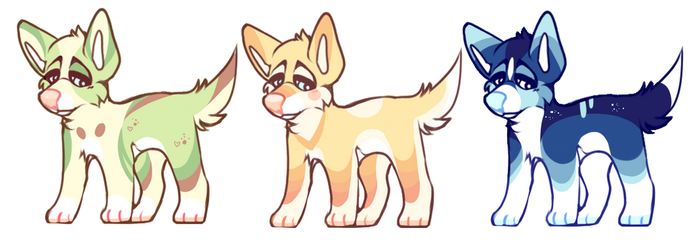 quick adopts FLAT SALE(closed) by foxpets