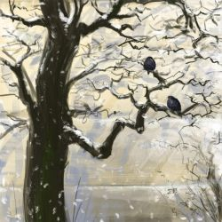 Starlings by Gogolle