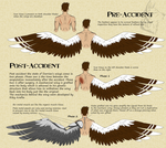 P - Dorrien's wing concept by IrishWolven