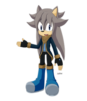 Li the Hedgehog /style Sonic x by sabrithecat97