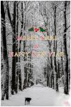 Merry Xmas and Happy New Year by corniger-aries