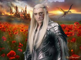 Thranduil scarlet poppies flowers by OlgaVPirogova