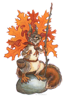 Pin Oak Squirrel by Rowkey
