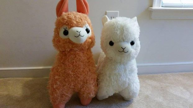 Alpacasso and Llamacasso by chocosunday