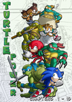 Turtle Power Cover One by Okida