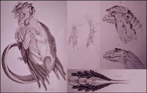Creature Sketches: Great Herald by Fluseic
