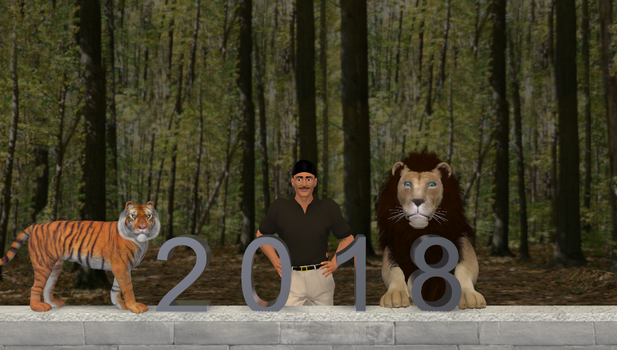 Wishing you a happy 2018 by LionkingCMSL