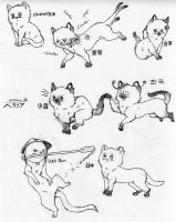Hetalia Kitties 11 by nightwindwolf95
