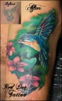Humming Bird Cover-up by Reddogtattoo