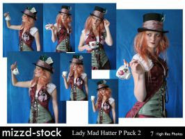 Lady Mad Hatter Portrait Pack2 by mizzd-stock