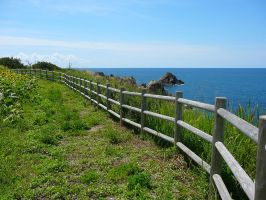 Cliff Fence by katters