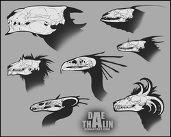 Skull Compilation by Dae-Thalin