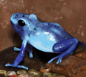 Little Blue Ribbit by Chocolate-Paper