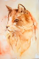 Daily watercolor: Cat by Nico-Northlights