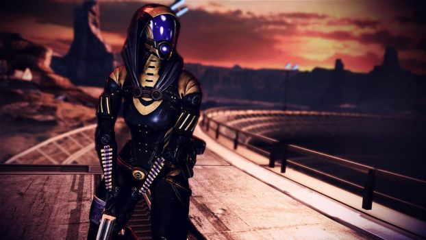 Tali'Zorah vas Normandy 25 by johntesh