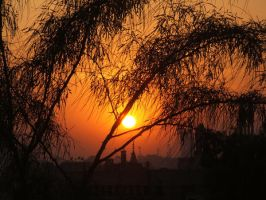 Tree branchs in sunset 1 by Magdyas