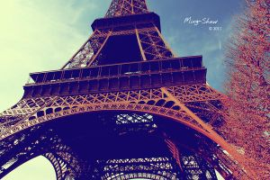 Eiffel Tower by Ming-Shuw