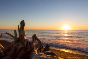 Sunrise at Napier by ARC-Photographic