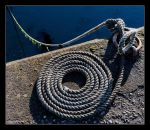 Neatly coiled by LordLJCornellPhotos