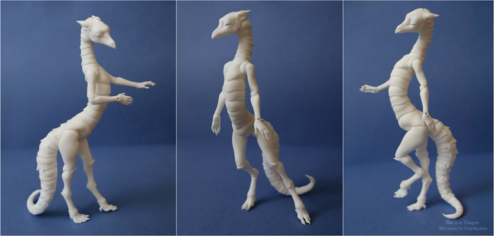 bjd dragon, some possibilities 2 by CrowBlackJay