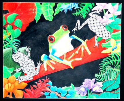 Red Eyed Tree Frog by Elena-Airan