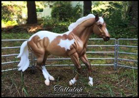 *Tallulah*! by Lexykentucky