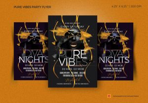 Pure vibes flyer by satgur