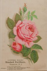 Victorian Advertising - How Does Your Garden Grow? by Yesterdays-Paper