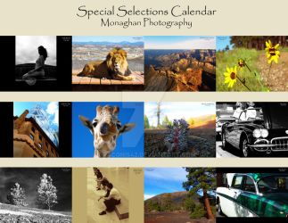 Special Selections Calendar by draconis42