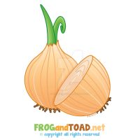 Oignon - Onion FROGandTOAD by FROG-and-TOAD