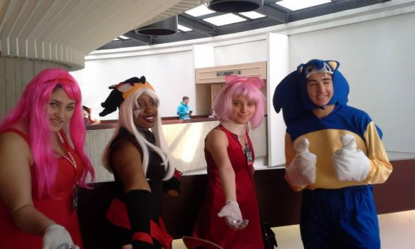 Sonic Group Cosplay Youmacon 2013 by PoisonflavoredGirls