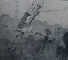 blue crane etching by FamousHistorian