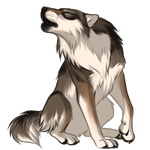 Wolf by TokoTime