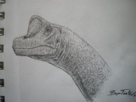 Giraffatitan by DinoHunter000