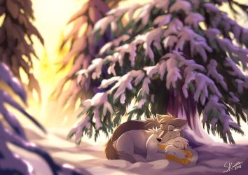 Winter Warmth - Commission by Skailla