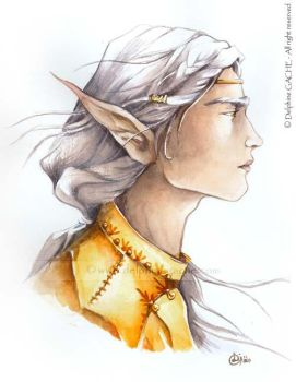 King elf by delfee