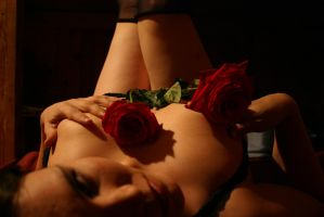 Second shot-two roses by Roxy-the-art-nut