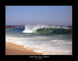 Cabo - Curl by xproVoke