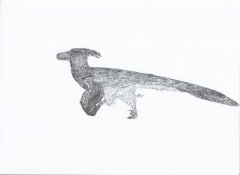 luanchuanraptor by PhanerozoicWild