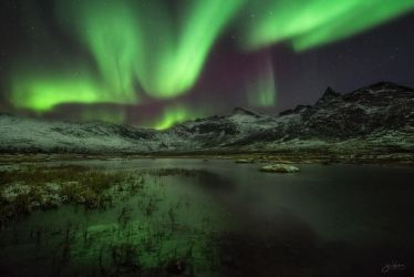 Some Crazy Ass Aurora Over Kattfjordeidet by BoholmPhotography