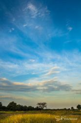 The Sky Is Dancing by snub-ndeng