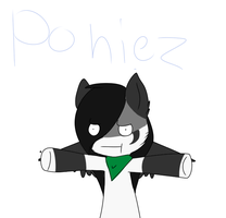 Poniez by alicesstudio