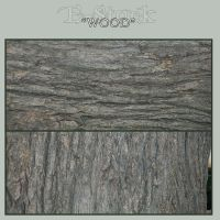 Wood Pack 3 by E-Stock